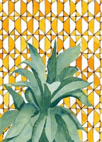 Yellow Tile Agave Fine Art Print