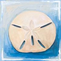 Sand Dollar on Blue Fine Art Print