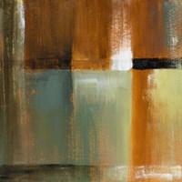 Sonoran Shadows IV Framed Print