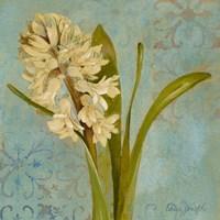 Hyacinth on Teal I Framed Print