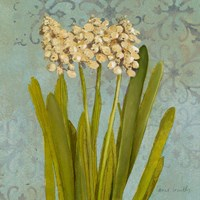 Hyacinth on Teal II Fine Art Print