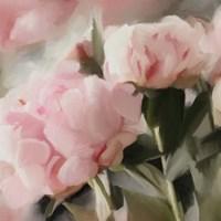 Floral Arrangement II Fine Art Print