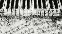 Black & White Piano Keys Fine Art Print