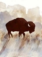 Buffalo Sunset Hill I Fine Art Print