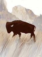 Buffalo Sunset Hill II Fine Art Print