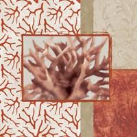 Coral Branch II Framed Print