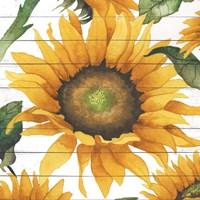 Happy Sunflower I Fine Art Print