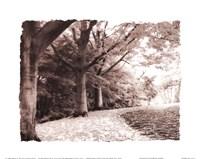 Queen Elizabeth Park Fine Art Print