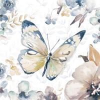 Butterfly Beauty II Fine Art Print