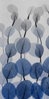 Sapphire Bunch 1 Fine Art Print