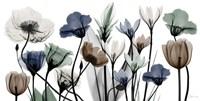 Floral Neutrals 1 Framed Print