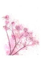 Whisper Pink Fine Art Print