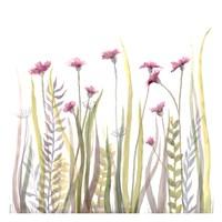 Garden Blooms 1 Fine Art Print