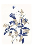 Indigo Flowers Two Framed Print