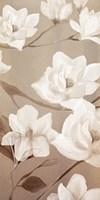Magnolia Panel 2 Framed Print