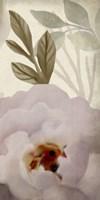 Simplicity Floral Panel C Framed Print