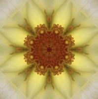 Colorful Kaleidoscope 21 Fine Art Print