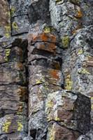 Sheepeater Cliffs Detail, Yellowstone National Park Fine Art Print