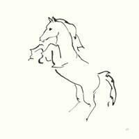 Line Horse IX Fine Art Print