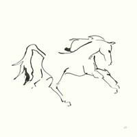 Line Horse VII Fine Art Print