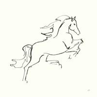 Line Horse VI Fine Art Print