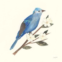 Birds and Blossoms III Fine Art Print