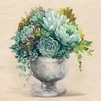 Festive Succulents I Framed Print