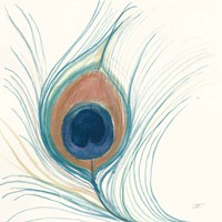 Peacock Feather II Blue Fine Art Print