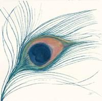 Peacock Feather I Blue Fine Art Print
