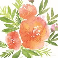 Peachy Floral I Framed Print