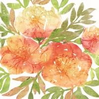 Peachy Floral III Framed Print