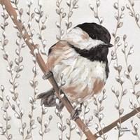 Wee Chickadee Fine Art Print