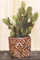 Potted Cactus II Framed Print