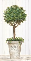 Magnificent Topiary II Framed Print