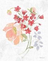 Floral Focus IX Framed Print