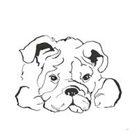 Line Dog Bulldog II Fine Art Print