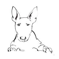 Line Dog Bull Terrier Fine Art Print