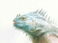 Tropical Iguana Fine Art Print
