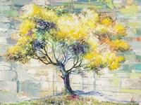 Albero del Sole Fine Art Print