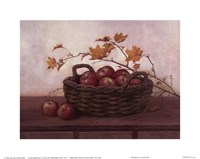Winesap and Maples Fine Art Print