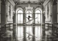 Ballerina in a Palace Hall Fine Art Print