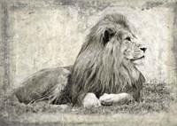Memories of Africa I Fine Art Print