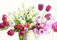 Bouquet on White Background Fine Art Print