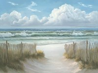 Coastal Fence Fine Art Print