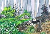 Bunny Burrow Fine Art Print