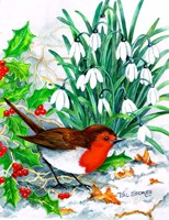 Robin's Return Fine Art Print