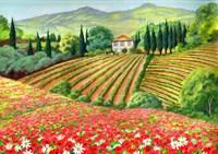Tuscany Terrain Fine Art Print