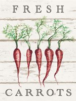 Fresh Carrots Fine Art Print