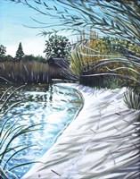 Sandy Reeds Fine Art Print