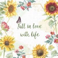 Sunflower Splendor II Fine Art Print